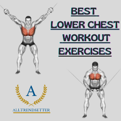 Best Lower Chest Workout Exercises